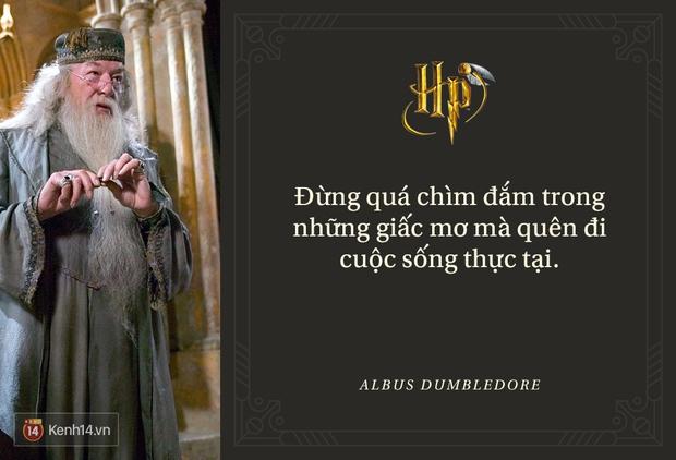 Đã 2 thập kỷ nhưng fan Harry Potter vẫn luôn nằm lòng những trích dẫn cùng mình lớn lên trong từng trang sách! - Ảnh 5.