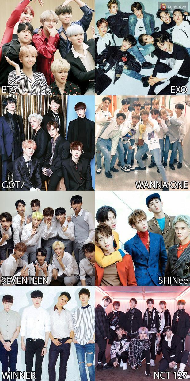 Bình chọn sao ngoại được fan Việt yêu thích nhất 2017: SNSD hay Black Pink, Song - Song hay Kim Tae Hee - Bi Rain mới hot hơn? - Ảnh 3.
