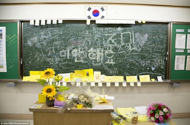 Bức ảnh tập thể lớp của các học sinh Hàn Quốc sau thảm kịch chìm phà Sewol khiến nhiều người rơi nước mắt - Ảnh 7.