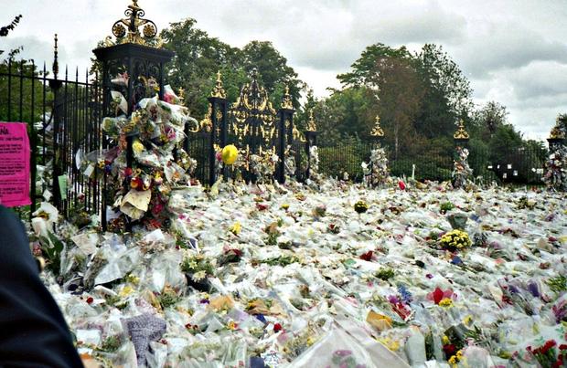 Sự ra đi của Công nương Diana: Nước Anh rúng động, tang thương và tỷ lệ tự tử tăng bất thường phía sau - Ảnh 3.