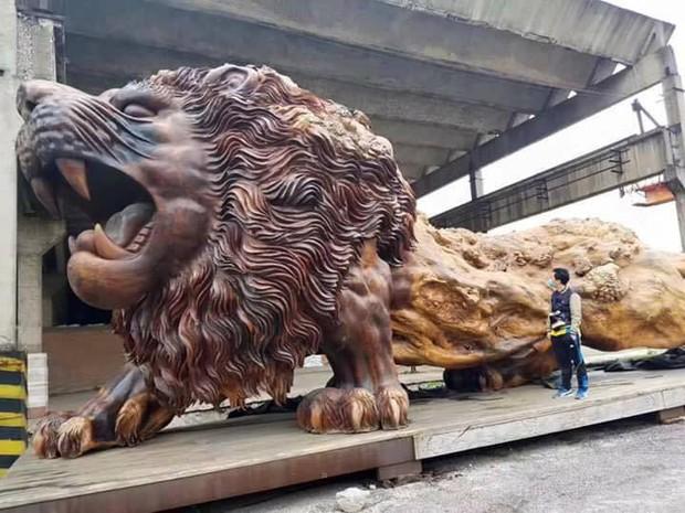 Bức tượng sư tử gỗ oai vệ cao 5m, dài 15m khiến người xem choáng ngợp - Ảnh 4.