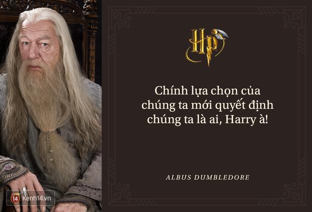 Đã 2 thập kỷ nhưng fan Harry Potter vẫn luôn nằm lòng những trích dẫn cùng mình lớn lên trong từng trang sách! - Ảnh 7.