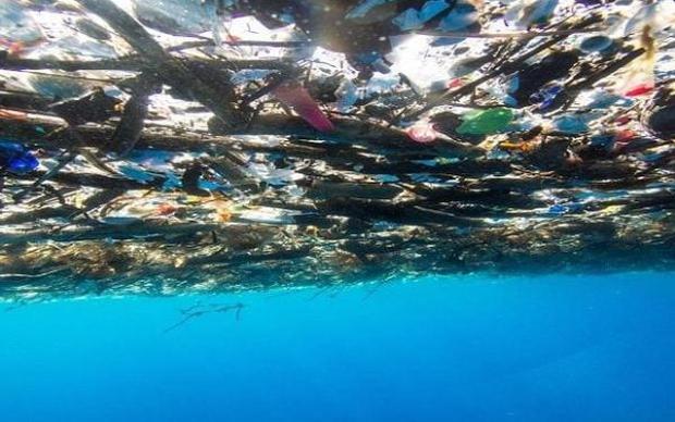 Tưởng bãi rác khổng lồ nhưng không ai ngờ, đây chính là quần đảo thiên đường Caribbean từng hút khách du lịch - Ảnh 4.