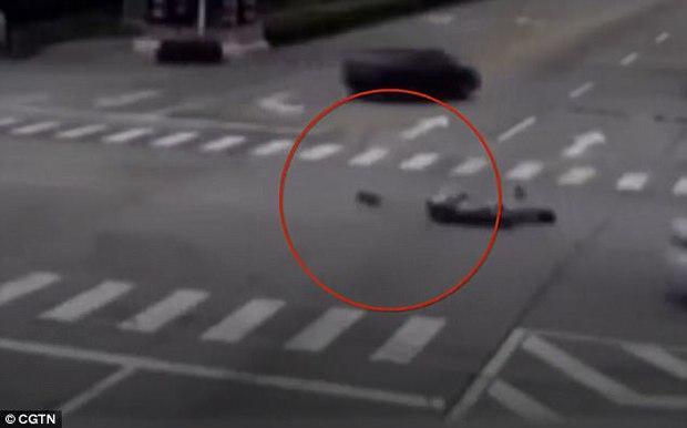 Chủ bị đụng xe, chó chạy theo chặn đầu ô tô gây tai nạn rồi đứng chờ cho tài xế xuống xe mới thôi - Ảnh 2.