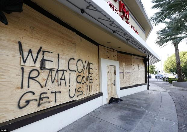 Florida vắng vẻ lạ thường trong cuộc sơ tán lớn nhất trong lịch sử Mỹ vì siêu bão quái vật Irma - Ảnh 7.