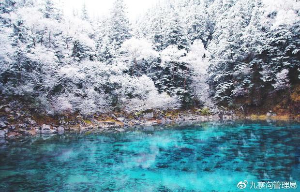 Quên Cửu Trại Câu lá vàng đi, thiên đường hạ giới mùa đông đẹp không khác gì chốn bồng lai tiên cảnh - Ảnh 2.
