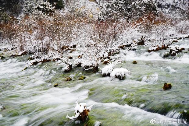 Quên Cửu Trại Câu lá vàng đi, thiên đường hạ giới mùa đông đẹp không khác gì chốn bồng lai tiên cảnh - Ảnh 6.