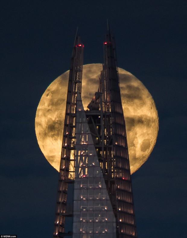 Trăng sói - siêu trăng đầu tiên của năm sẽ xuất hiện vào đúng 1/1/2018 - Ảnh 2.