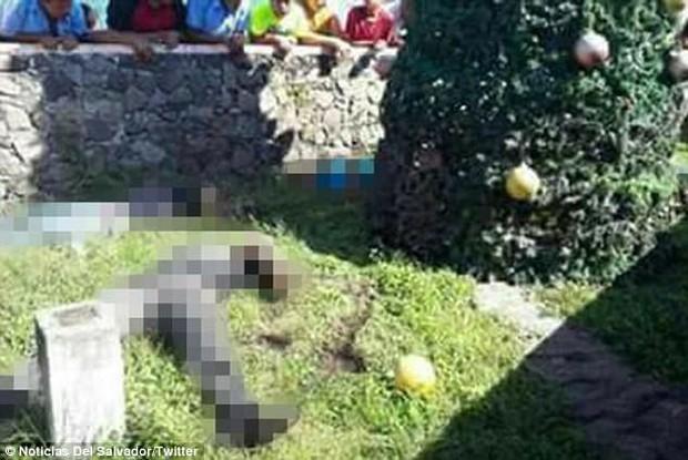 Thảm kịch mùa Giáng sinh: 5 người chết vì bị điện giật trong khi trang trí cây thông Noel ở công viên - Ảnh 2.