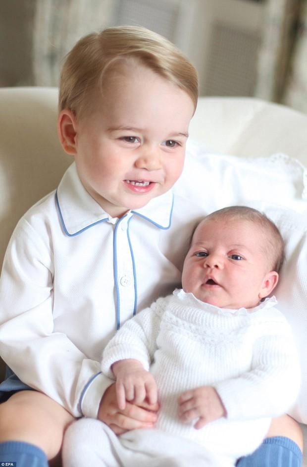 Công nương Kate được Hiệp Hội Nhiếp ảnh Hoàng Gia Anh khen ngợi vì những bức ảnh tuyệt đẹp - Ảnh 9.