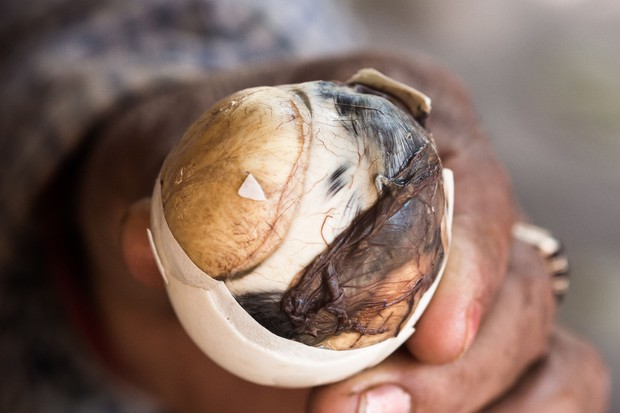 Người nước ngoài lần đầu ăn trứng vịt lộn: có người bỏ chạy khi vừa mới đập trứng - Ảnh 10.