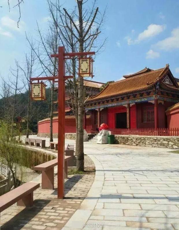 Sinh viên Trung Quốc thích thú với trường học có lối thiết kế như Hoàng cung, đi học như lên chầu - Ảnh 7.
