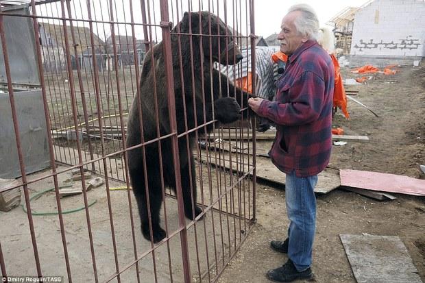 Chùm ảnh: Phía sau ánh đèn sân khấu là nỗi buồn của 2 chú gấu xiếc bị bỏ rơi - Ảnh 11.