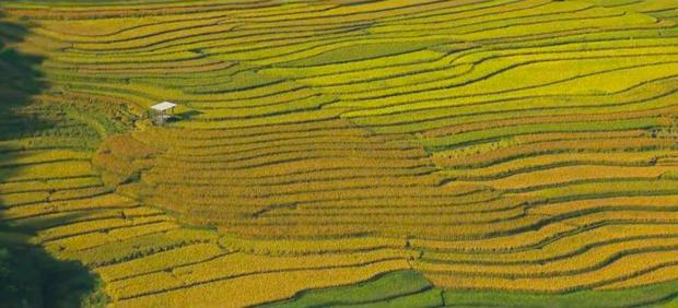 Những thước phim du lịch tuyệt đẹp và câu chuyện đầy cảm hứng của cô gái Việt nghỉ việc đi khắp nơi - Ảnh 8.
