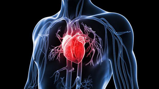Nghiên cứu kéo dài 12 năm: Ngồi nhiều không tốt nhưng đứng lâu còn gây hại tim gấp đôi - Ảnh 2.