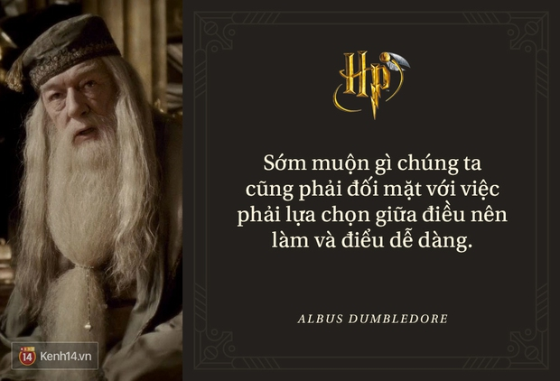 Đã 2 thập kỷ nhưng fan Harry Potter vẫn luôn nằm lòng những trích dẫn cùng mình lớn lên trong từng trang sách! - Ảnh 15.