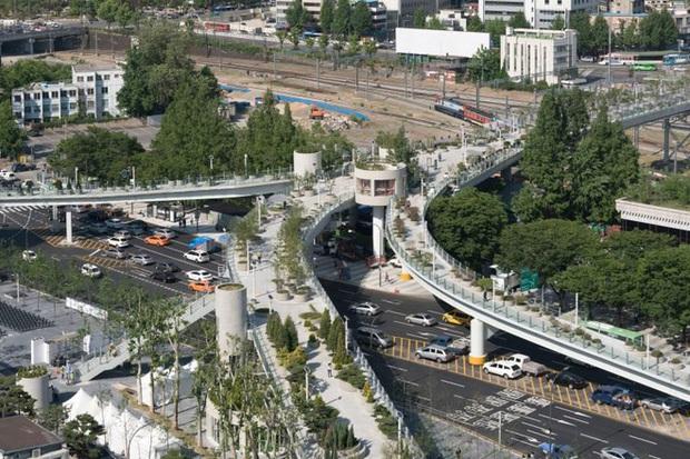 Ngắm khu vườn đẹp như cổ tích trên cầu vượt ở Seoul - Ảnh 1.