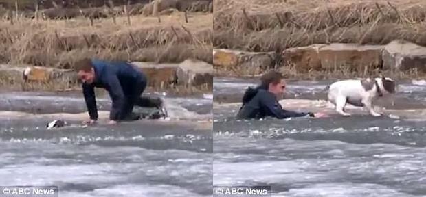 Chàng trai trẻ lao xuống dòng sông băng để giải cứu chú chó cưng mắc kẹt - Ảnh 2.