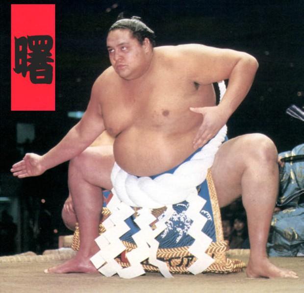 Võ sĩ sumo từng 4 lần vô địch bị hạ nhục nhã trên sàn MMA - Ảnh 1.