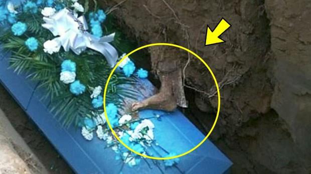 Đưa người cha quá cố đi chôn cất, cả gia đình lạnh gáy khi nhìn thấy thứ này trên quan tài - Ảnh 1.