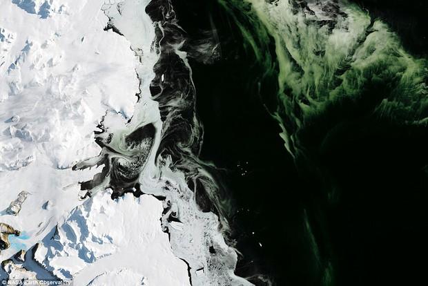 Điều bí ẩn nào khiến cho lớp băng ở Nam Cực có màu xanh? - Ảnh 1.