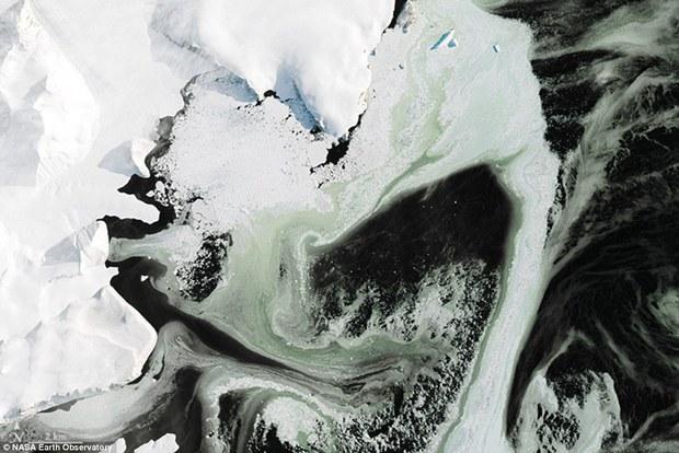 Điều bí ẩn nào khiến cho lớp băng ở Nam Cực có màu xanh? - Ảnh 3.