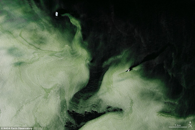 Điều bí ẩn nào khiến cho lớp băng ở Nam Cực có màu xanh? - Ảnh 2.