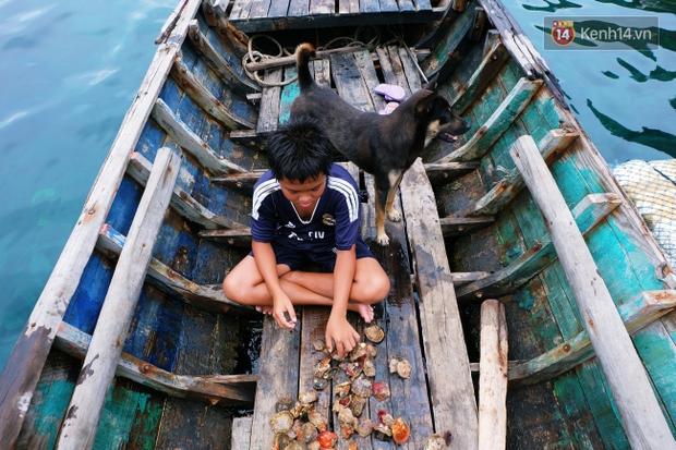 Rạp phim 300k vượt 300km ra biển, đem ciné cho tụi con nít nghèo trên đảo Hòn Chuối - Ảnh 15.