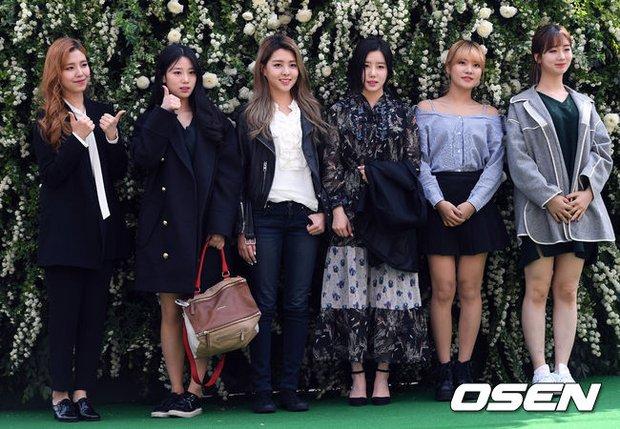 Hôn lễ đẹp nhất xứ Hàn: S.E.S tái hợp, chủ tịch SM Lee Soo Man cùng dàn sao khủng xuất hiện - Ảnh 28.