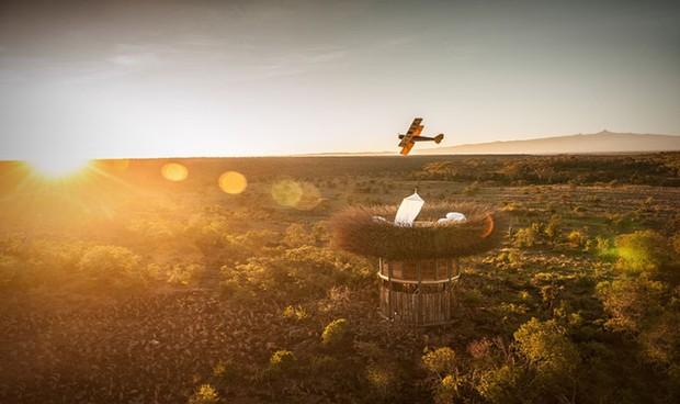 Mục sở thị phòng khách sạn tổ chim 5 sao đầu tiên trên thế giới - Ảnh 1.