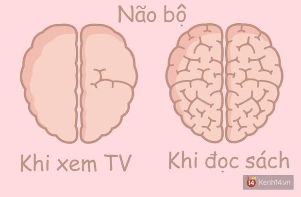 Hóa ra hoạt động thường ngày cũng khiến não bộ phình ra xẹp nhỏ lại như thế này! - Ảnh 1.