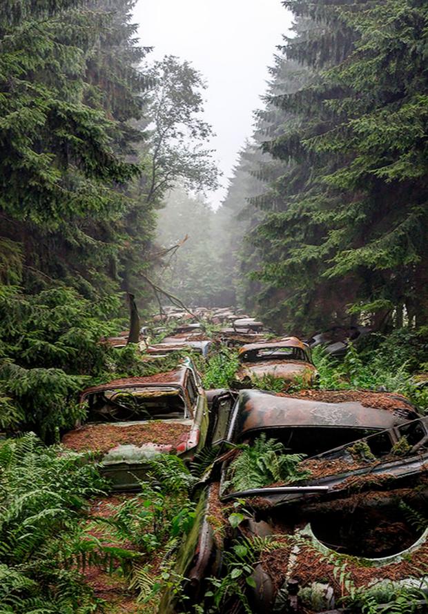 7 địa điểm không dành cho những người yếu tim: Từ nhà nguyện xương người tới nghĩa địa xe hơi - Ảnh 15.