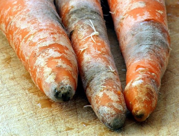 Khi mua cà rốt về, đầu bếp giỏi sẽ luôn bỏ phần này và đây là lí do - Ảnh 1.