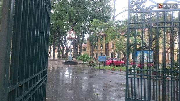 Hà Nội: Cây đổ sau mưa dông, nữ sinh trường Chu Văn An gãy cả tay chân - Ảnh 5.