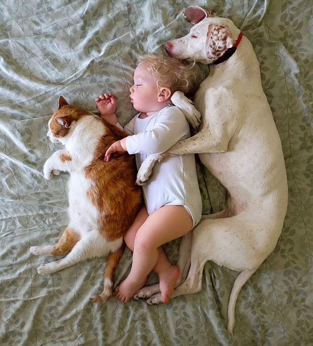 Tình bạn ấm áp của em bé và chú chó từng là nạn nhân của nạn bạo hành động vật - Ảnh 25.