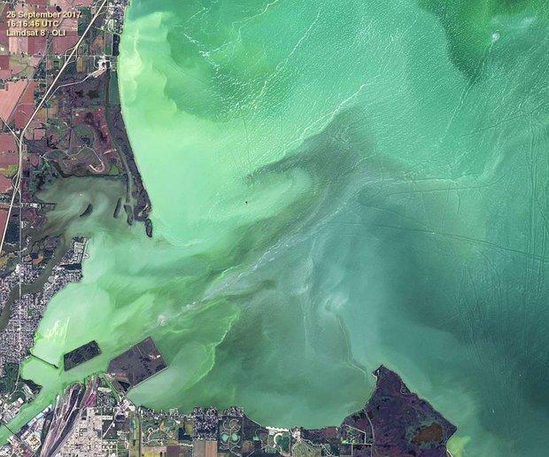Hồ nước biến thành màu xanh tuyệt đẹp sau hơn nửa thế kỷ, nhưng đó lại là tin cực kỳ không tốt - Ảnh 2.