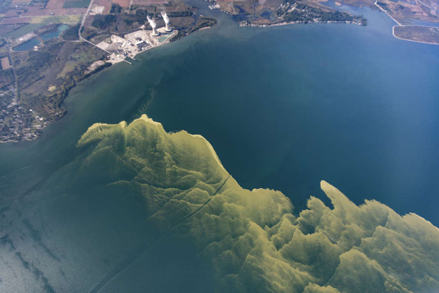 Hồ nước biến thành màu xanh tuyệt đẹp sau hơn nửa thế kỷ, nhưng đó lại là tin cực kỳ không tốt - Ảnh 4.