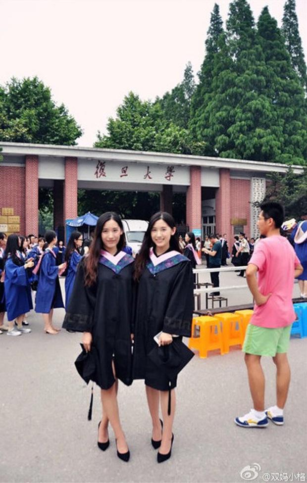 Cặp song sinh Trung Quốc đã xinh lại còn giỏi nổi tiếng vừa tốt nghiệp thạc sĩ Giáo dục ở Harvard - Ảnh 4.