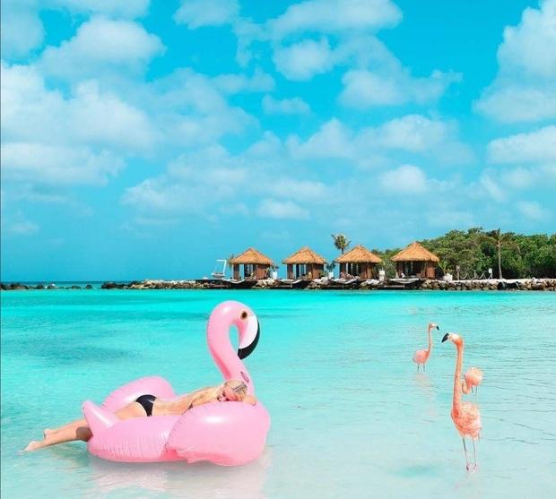 Nóng như thế này chỉ muốn đến ngay chốn thiên đường này tắm biển, chụp ảnh sống ảo cùng hồng hạc mà thôi! - Ảnh 6.