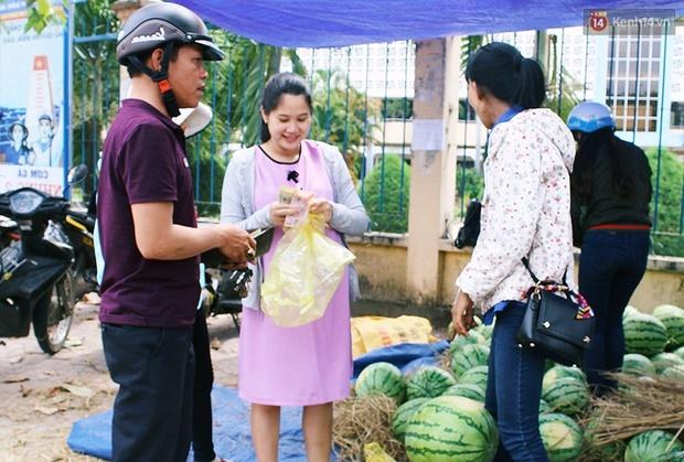 Nông dân Quảng Ngãi phải đem dưa hấu đổ cho bò ăn: Cần lắm sự chung tay giải cứu của cộng đồng - Ảnh 11.