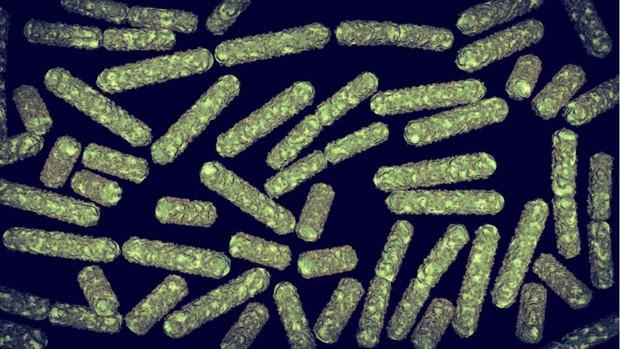 Vi khuẩn trong vũ trụ đang tạo ra hiệu ứng chưa từng có, khiến phi hành gia gặp nguy hiểm - Ảnh 1.