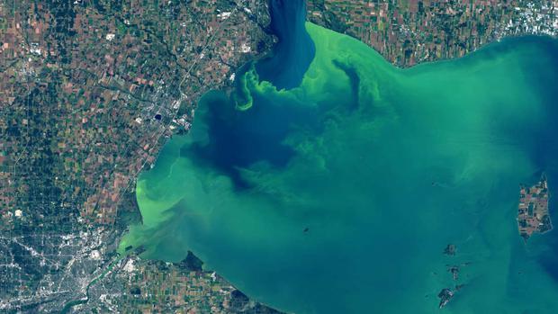 Hồ nước biến thành màu xanh tuyệt đẹp sau hơn nửa thế kỷ, nhưng đó lại là tin cực kỳ không tốt - Ảnh 1.