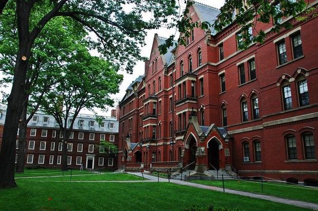 Hiệu trưởng trường ĐH Harvard: Có 16 bạn trẻ Việt đang theo học tại trường - Ảnh 4.