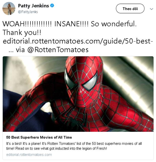 Wonder Woman là phim siêu anh hùng có rating cao nhất mọi thời đại trên Rotten Tomatoes - Ảnh 4.