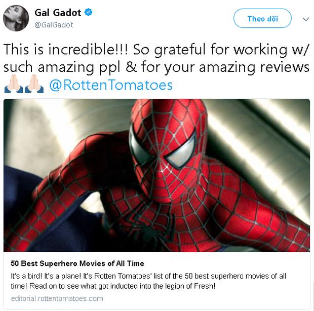 Wonder Woman là phim siêu anh hùng có rating cao nhất mọi thời đại trên Rotten Tomatoes - Ảnh 5.