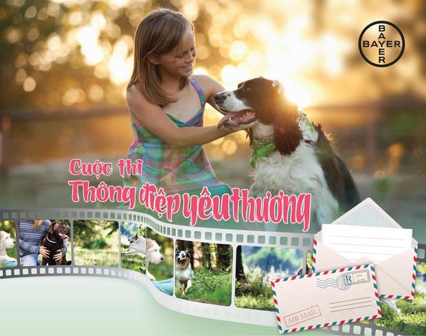 Chia sẻ tình yêu của bạn với cún cưng hôm nay – Nhận quà liền tay - Ảnh 1.