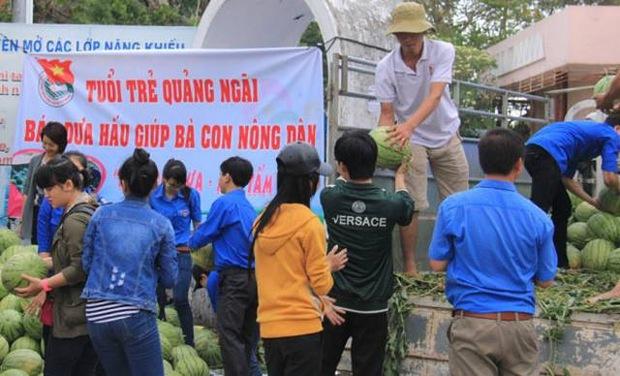 Nông dân Quảng Ngãi phải đem dưa hấu đổ cho bò ăn: Cần lắm sự chung tay giải cứu của cộng đồng - Ảnh 14.