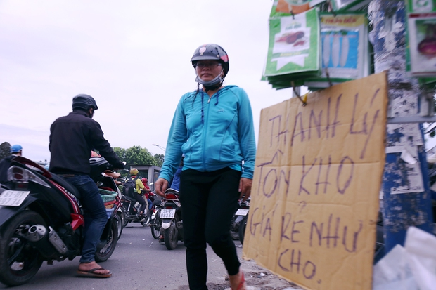 Hàng chục gian hàng gần sân bay Tân Sơn Nhất ồ ạt thanh lý chó, gà, cây cảnh, giao thông Sài Gòn hỗn loạn - Ảnh 4.