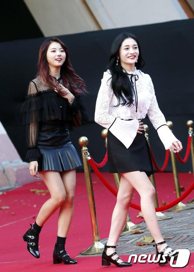 Asia Artist Awards bê cả showbiz lên thảm đỏ: Yoona, Suzy lép vế trước Park Min Young, hơn 100 sao Hàn lộng lẫy đổ bộ - Ảnh 55.