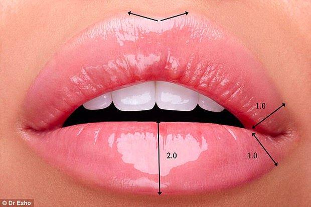 Tìm ra tiêu chuẩn cho đôi môi hoàn hảo được nhiều người khao khát nhất - Ảnh 2.